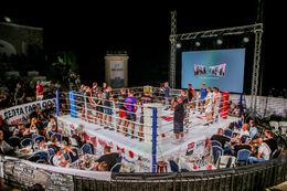 Max Fight 44